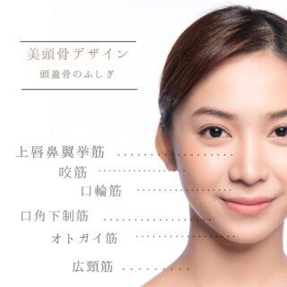 【美頭骨デザイン】『顔』にも凝りがあるんです!
